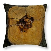 The Heart Of A Tree Throw Pillow