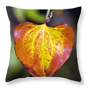 The Heart Of Autumn Throw Pillow