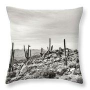 The High Desert  Throw Pillow