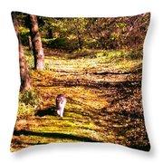The Hiker Throw Pillow