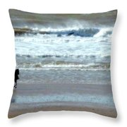 The Horse And The Sea Throw Pillow