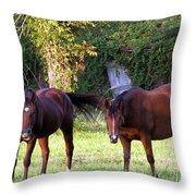 The Horses Throw Pillow