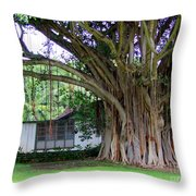 The House Beside The Banyan Tree Throw Pillow
