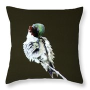 The Hummer Image Throw Pillow