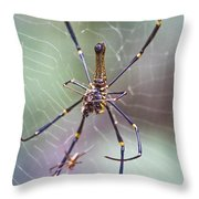 The Hunter And It's Prey Throw Pillow