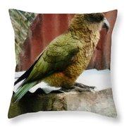 The Intelligent Kea Throw Pillow