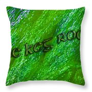 The Keg Room With Harps Throw Pillow