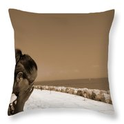 The Lady And The Sea Throw Pillow