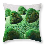 The Land Of Milk And Money Throw Pillow
