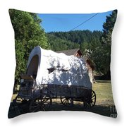 The Last Leg In Color Throw Pillow