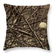 The Last Little Apple On The Tree Throw Pillow