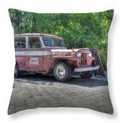 The Last Safari Throw Pillow