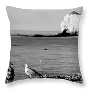 The Lazy Albatrosses Throw Pillow