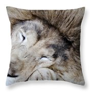 The Lion Sleeps Throw Pillow