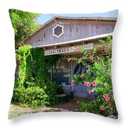 The Local Antique Store Throw Pillow