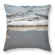 The Lone Sandpiper Throw Pillow