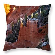 The Lonely One Throw Pillow