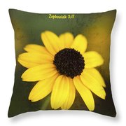 The Lord Thy God In The Midst Of Thee Is Mighty Throw Pillow