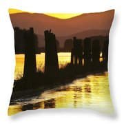 The Lost River Of Gold Throw Pillow