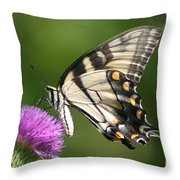 The Love Of Thistle Throw Pillow