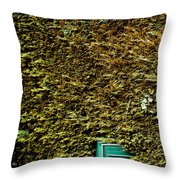 The Mail Box Throw Pillow