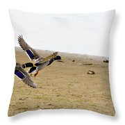 The Mallard Ducks Flight Throw Pillow