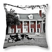 The Manor Throw Pillow by Elizabeth Hart