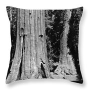 The Mariposa Grove In Yosemite Throw Pillow