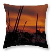 The Marsh At Sunset Throw Pillow
