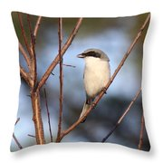 The Masked One Throw Pillow