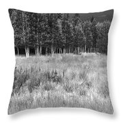 The Meadow Black And White Throw Pillow