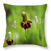 The Mexican Hat Flower Throw Pillow