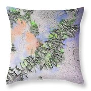 The Microscope Slide Throw Pillow