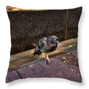 The Mighty Pigeon Throw Pillow