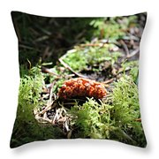 The Mighty Pine Cone Throw Pillow