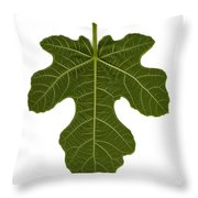 The Mission Fig Leaf Throw Pillow