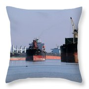 The Mississippi River Throw Pillow