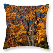 The Moment Of Glory Throw Pillow