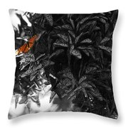 The Monarch Stands Alone Throw Pillow