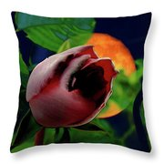 The Moon And The Rose Throw Pillow