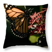 The Morning Monarch Throw Pillow