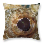 The Mosaic Eye Of The Venemous Throw Pillow