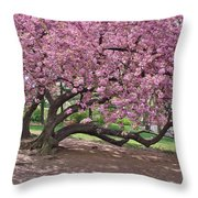The Most Beautiful Cherry Tree Throw Pillow