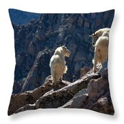 The Mountaineers Throw Pillow