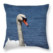 The Mute Swan Throw Pillow
