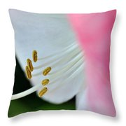 The Naked Lady - Hippeastrum Throw Pillow