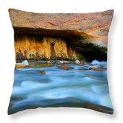 The Narrows Virgin River Zion 4 Throw Pillow