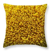 The Nature Of A Sunflower Throw Pillow