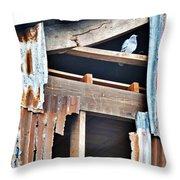 The Nervous Pigeon  Throw Pillow