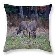 The Next Generation Throw Pillow